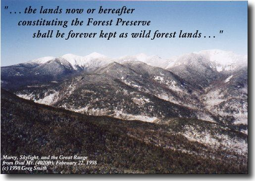 ... the lands now or hereafter constituting the Forest  Preserve shall be forever kept as wild forest lands ...